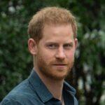 Prince Harry phone number celebrities123